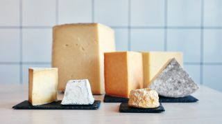 Can you freeze cheese? Image of different types of cheeses