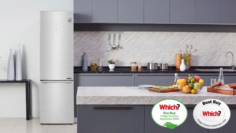 LG stainless steel fridge freezer