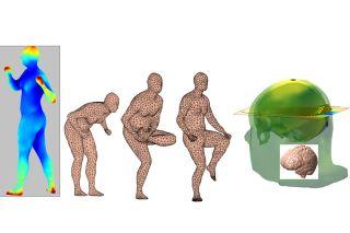 bioelectromagnetics, human body, MATLAB