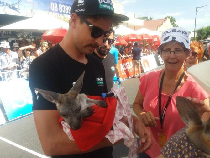 Peter Sagan with a kangaroo at the Tour Down Under