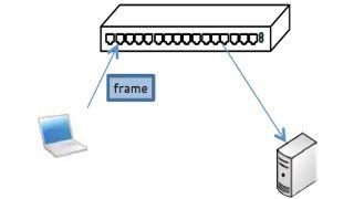Byte-Sized Lesson In AV/IP: L2 Switches/VLANs