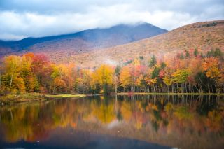 A hardwood forest at peak fall color reflects in Shadow Lake, north of Lincoln, New Hampshire, White Mountain National Forest.