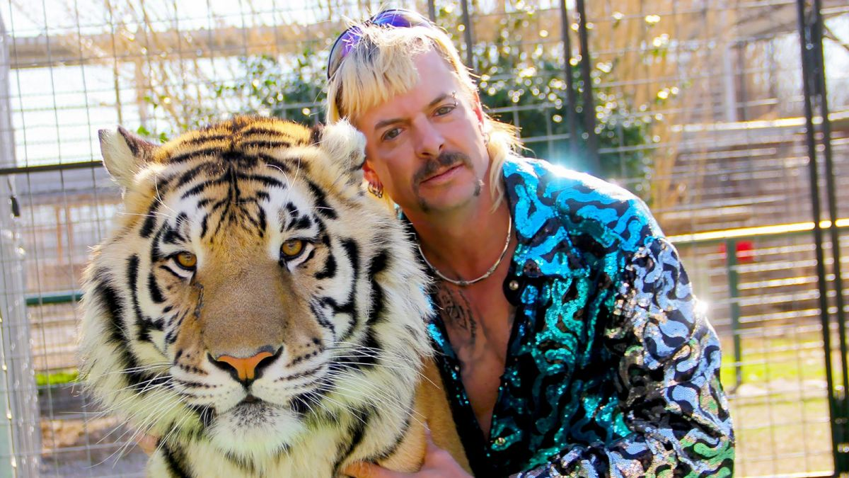What to watch after Tiger King: 11 great documentaries and shows