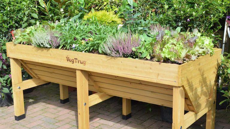 Raised planter by VegTrug