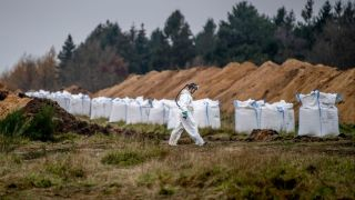 A man in a hazmat suit walks past ditches and bags of Calcium oxide as members of Danish health authorities assisted by members of the Danish Armed Forces dispose of dead mink in a military area near Holstebro, Denmark on November 9, 2020.