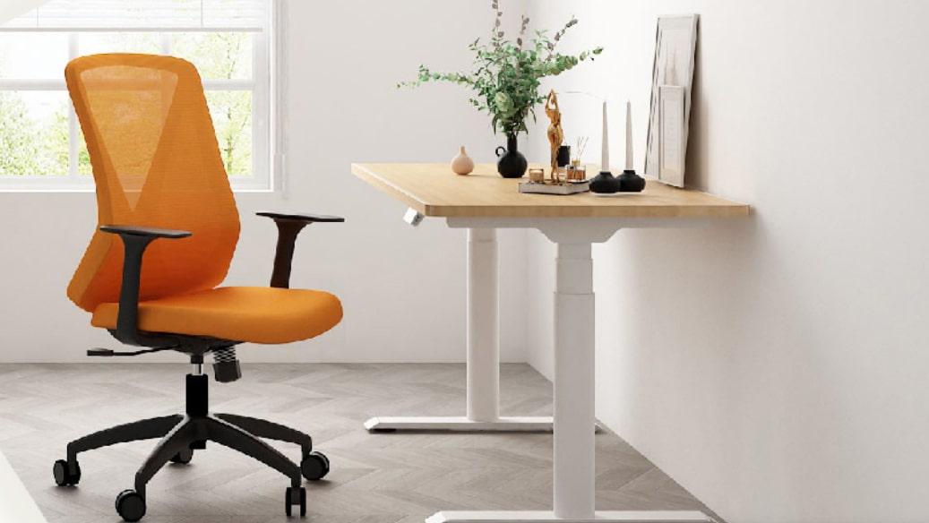Flexispot office chair