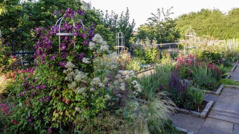 Sensory garden ideas with fragrant flowers