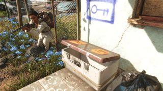 Far Cry 6 criptograma