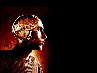 brains, emotions, mind, decisions