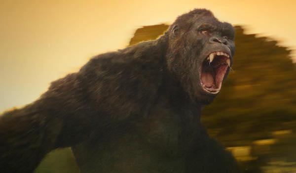 Kong: Skull Island King Kong MonsterVerse