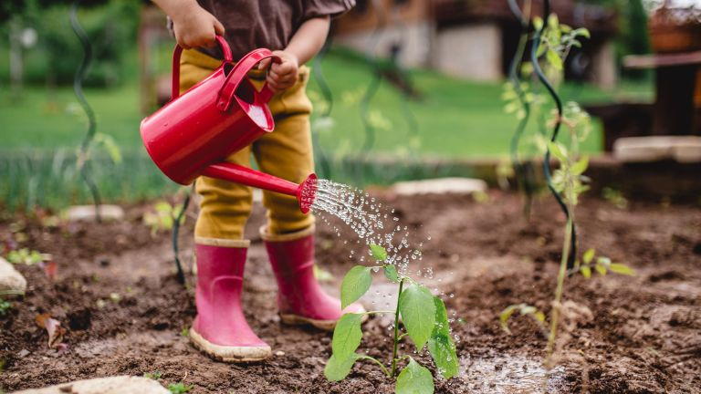 child pouring red watering can