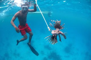 Fisherman spearing lionfish in Belize