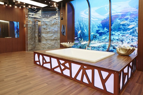 The new Big Brother bathroom has a huge aquarium on one wall (Channel 5)