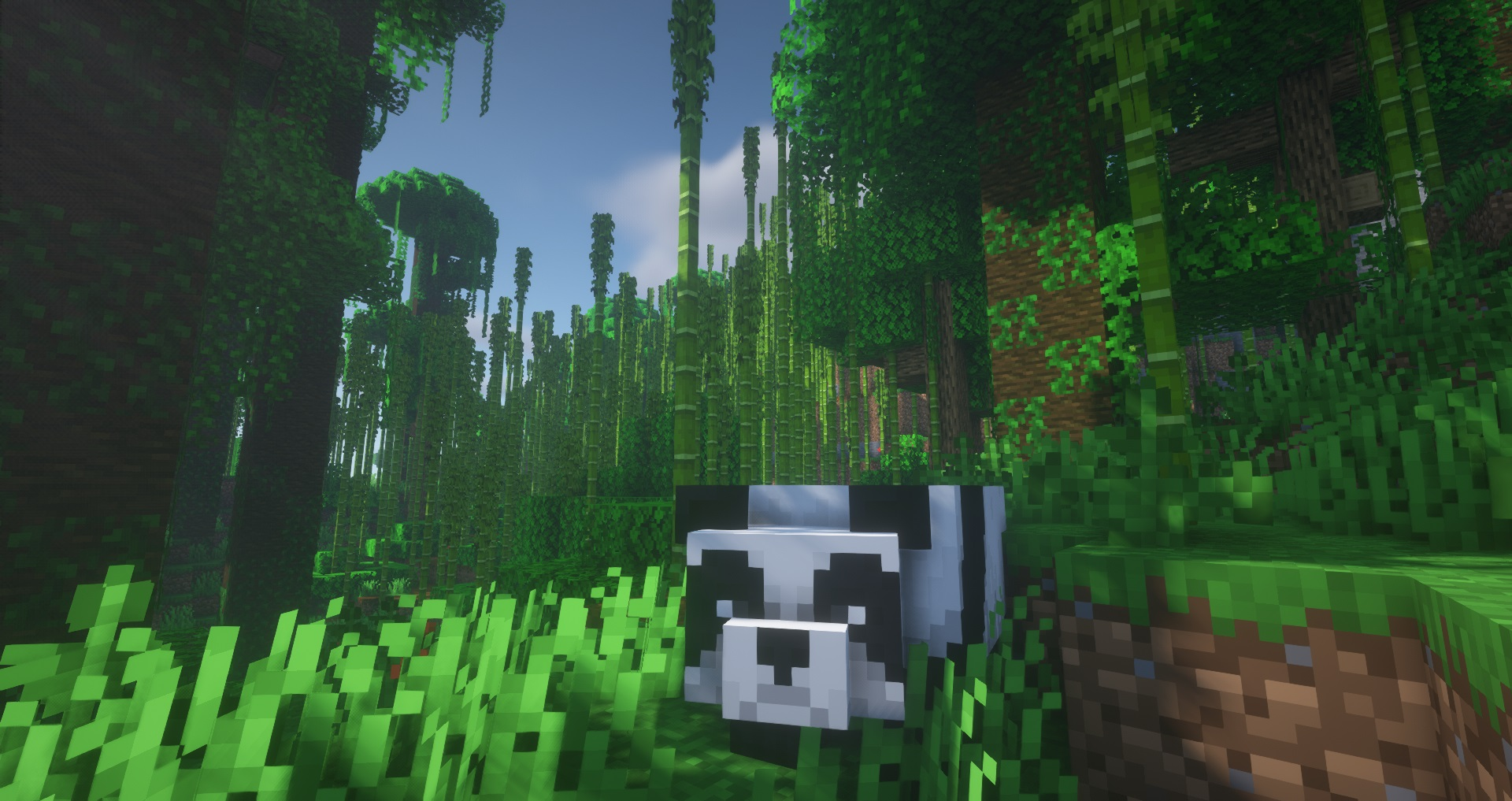 Minecraft seed - big bamboo jungle - A panda mob stands in the center of a large bamboo forest