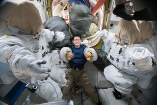 Astronaut Norishige Kanai of the Japan Aerospace Exploration Agency tries on a pair of spacesuit sleeves inside the Quest airlock of the International Space Station.