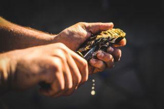 oyster, shucking, shuck