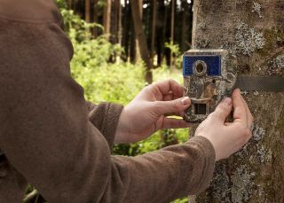 Attaching a trail camera to a tree