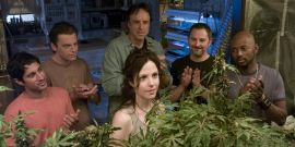 What The Weeds Cast Is Doing Now, Including Mary-Louise Parker