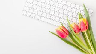 Tulips next to computer keyboard