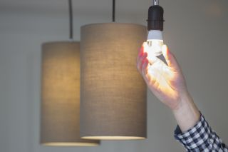 Light bulb guide: LED vs. CFL vs. halogen