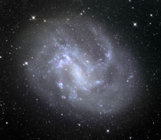 The galaxy NGC 4395 as seen by the Schulman Telescope at the Mount Lemmon Observatory in Arizona.