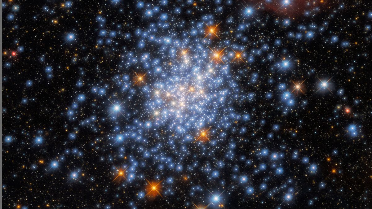 Hubble telescope spots red, white and blue stars in sparkly cluster