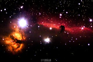 Horsehead and Flame Nebulae by Hogan