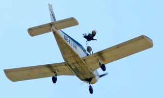 A wild turkey is released from a plane flying over Crooked Creek during the 72nd annual Turkey Trot in Yellville, Arkansas, Oct. 14, 2017. An investigation by the FAA into the event released their report in November 2017 saying they found no violations.