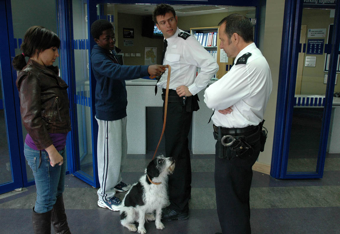 Is Harry the dog involved in a drug deal?