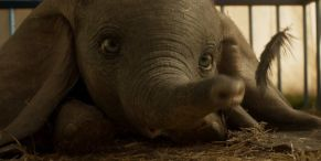 Dumbo Box Office: The Baby Elephant Doesn't Quite Soar