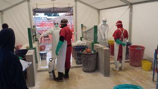Ebola virus doctors