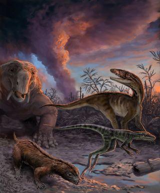 dinosauromorphs, dinosaur relatives