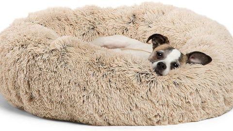 Best Friends by Sheri Original Calming Donut Dog Bed