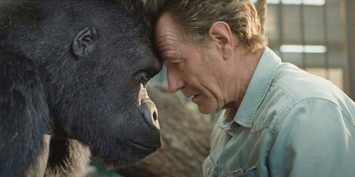 Bryan Cranston in The One and Only Ivan.
