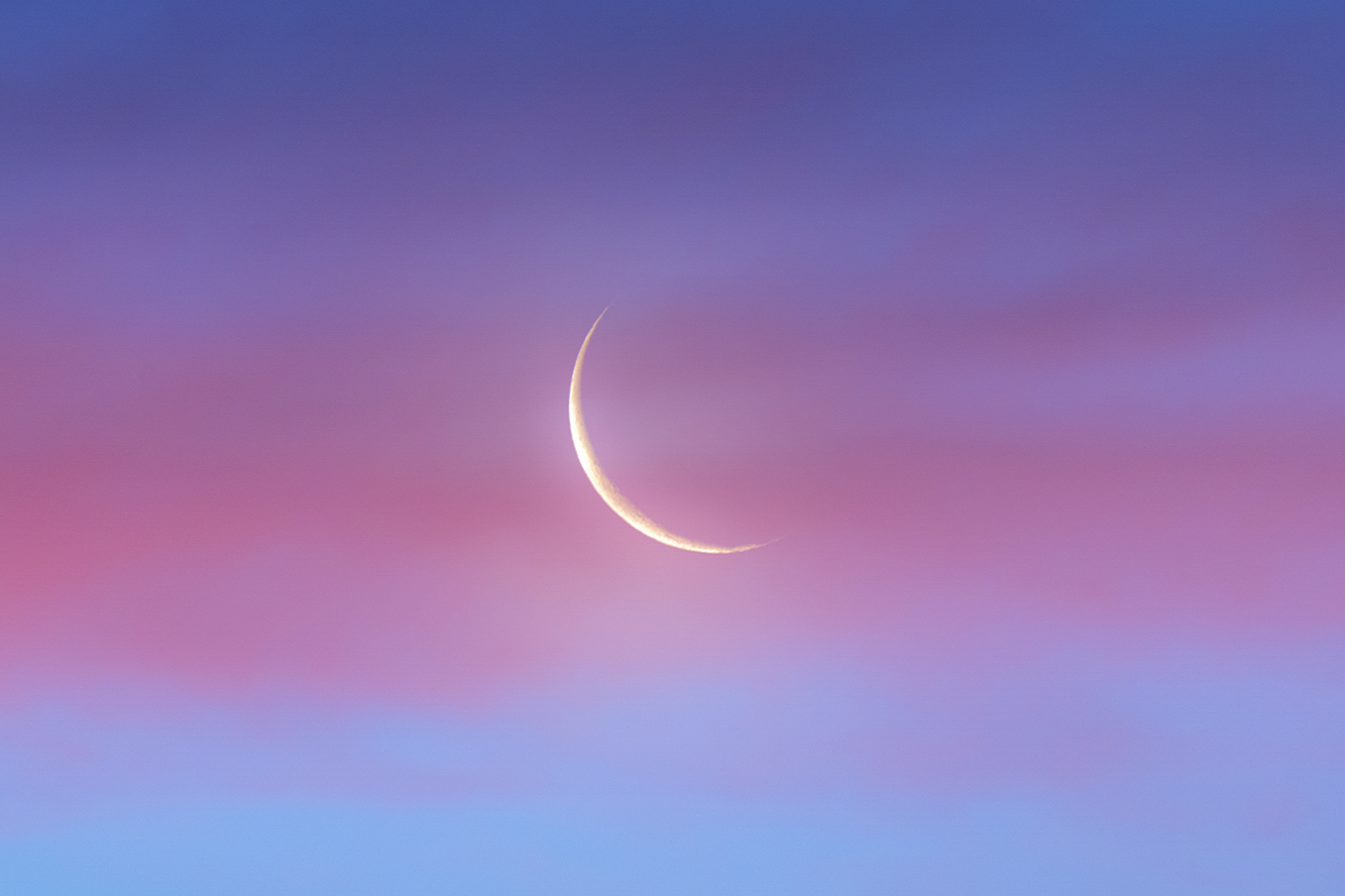 Pink Clouds Adorn Crescent Moon In Gorgeous Photo