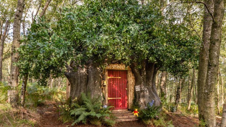 Winnie the Pooh Airbnb in Ashford Forest, England.