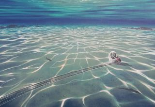 An artists' impression of a Jurassic-era ammonite that left a drag mark as lake currents pushed it around after its death.