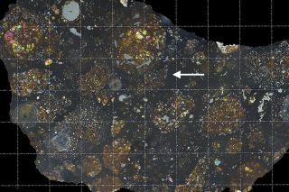 Scientists found the carbon-rich fragment of a comet embedded within a meteorite (at white arrow). The meteorite's colors can be seen by shining polarized light through a thin slice, and the grid lines show intervals of one millimeter.