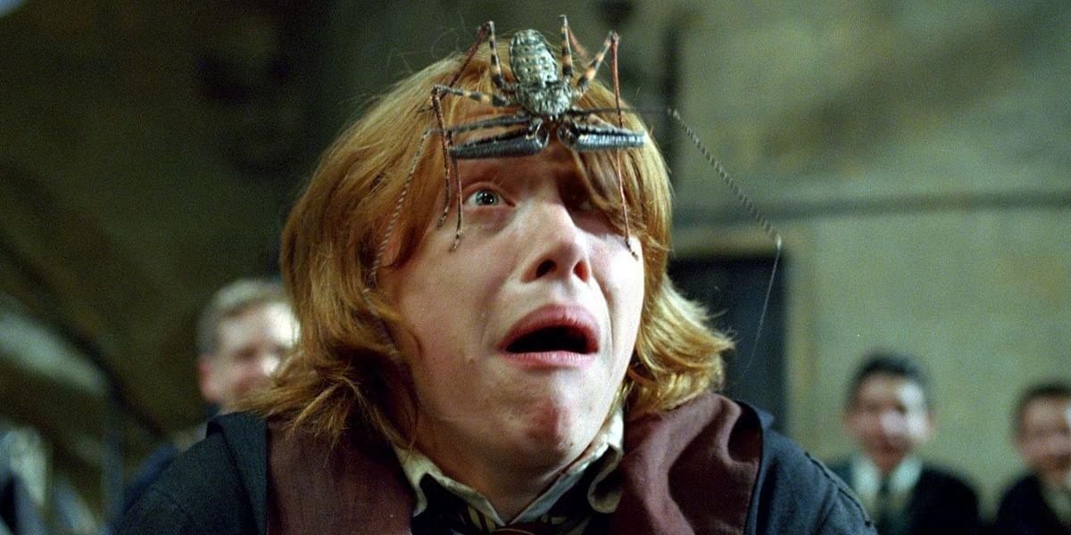 Rupert Grint as Ron Weasley in Harry Potter