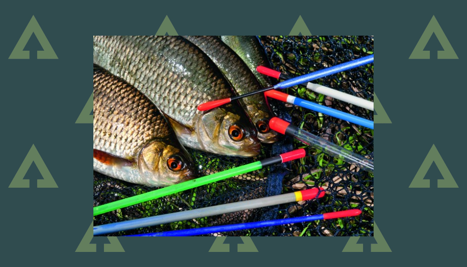 How to choose the right float for stillwater fishing