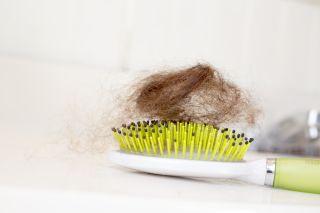 hair, brush, hair ball