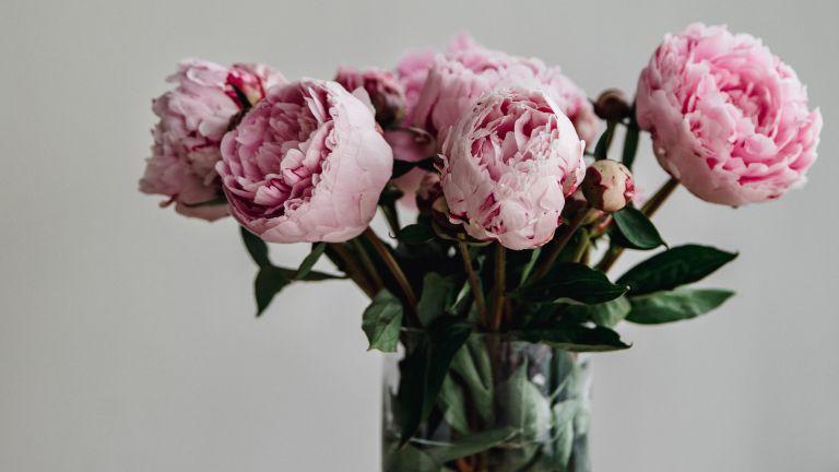 Simon Lycett, celebrity flower trends