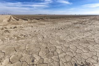 Not a drop of moisture can be seen near this fallow crop field in Fresno County, in San Joachin Valley, California.
