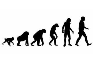 human-evolution-02