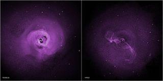 Perseus and Virgo Galaxy Clusters