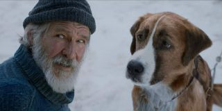Harrison Ford and dog named Buck in The Call of the Wild