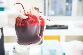 A researcher holding bags of blood.