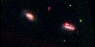 Dwarf galaxy clusters