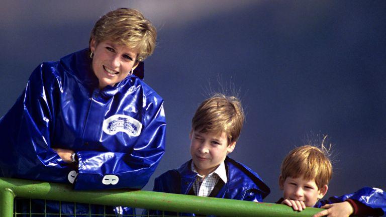 Princess Diana harry and william