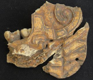 This carved and painted human mandible (jawbone) was found in a ceremonial area within a residential complex at the site of Dainzú-Macuilxóchitl in Mexico.